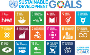 1200px-Sustainable_Development_Goals